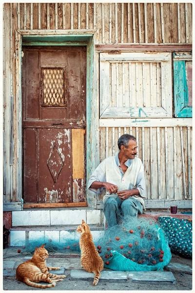 الاسكندرية - روان حافظ