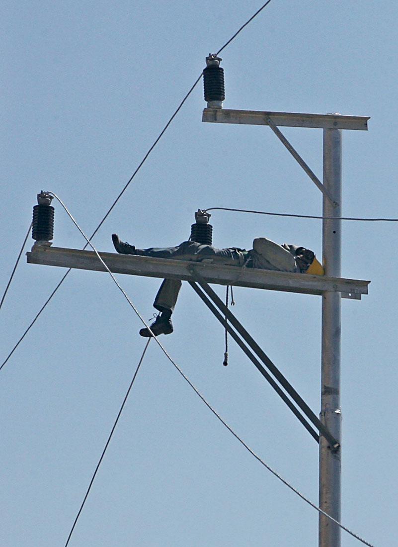 غفوة على عمود كهرباء على طريق جرش