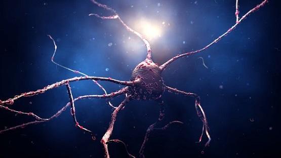 ابتكار طريقة لعلاج السرطان بالخلايا الجذعية
