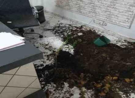 ليبي يقتحم السفارة الفلسطينية بنواكشوط
