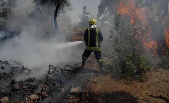 إخماد حريق أتى على عشرات الدونمات في إربد