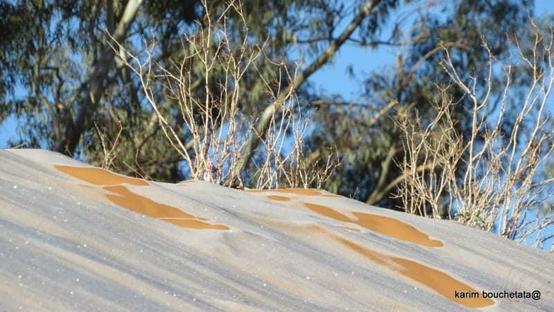 طبقات الجليد تزيّن كثبان صحراء الجزائر - صور