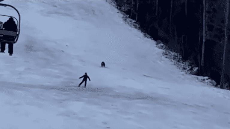 متزلج ينجو من دب بذكاء - فيديو