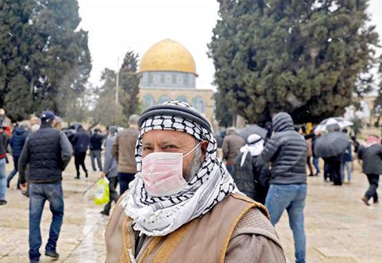 فلسطين تعلن تسطيح المنحنى الوبائي