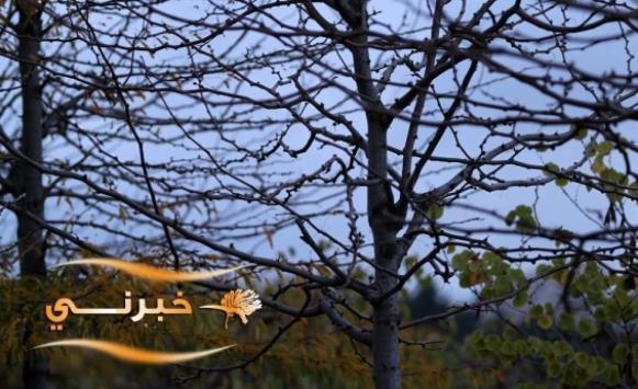 كتلة هوائية من أصول قطبية قادمة للأردن