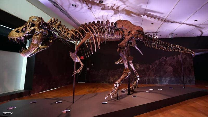 دراسة: 2.5 مليار تيرانوصور جابوا الكرة الأرضية