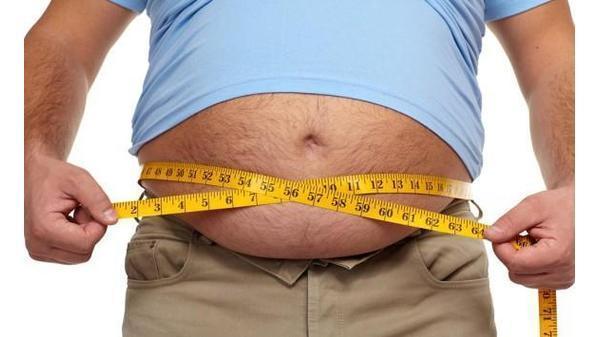 مخاطر الدهون الحشوية على الأعضاء الداخلية للجسم