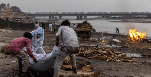 جثث ضحايا كورونا في الأنهار بالهند