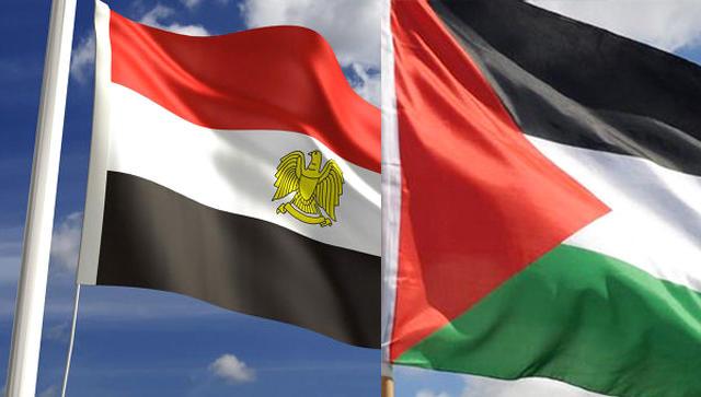 مصر ترسل 65 طنا من الأدوية والمستلزمات الطبية إلى غزة