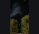 صواريخ المقاومة تظهر من سماء عمّان