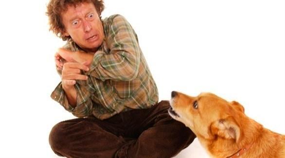 هل تخاف من الكلاب؟ إليك هذه النصائح
