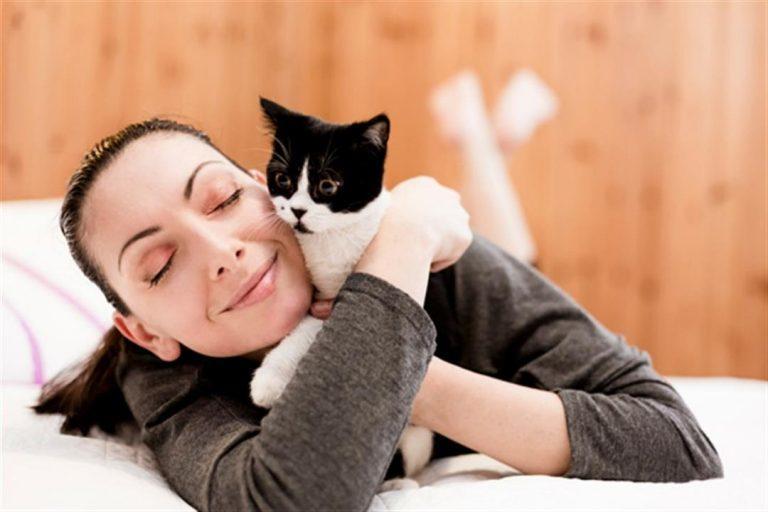 للفتيات.. أضرار غير متوقعة لتربية القطط