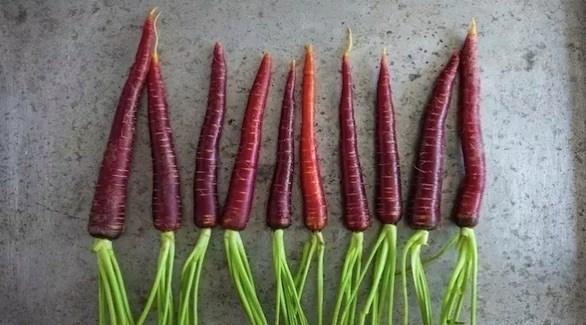 5 فواكه وخضروات أرجوانية عليك إضافتها لنظامك
