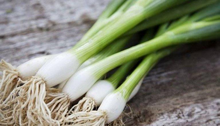فوائد البصل الأخضر للنساء