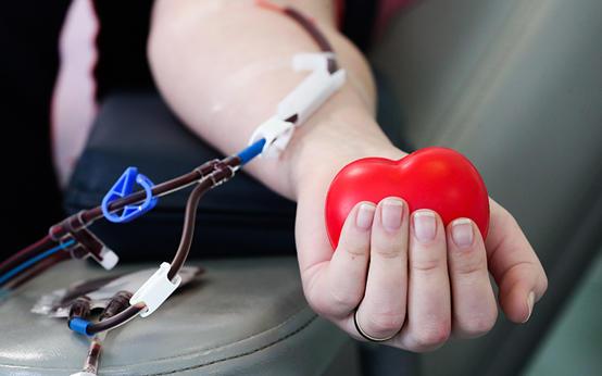 ما تريد معرفته عن فصائل الدم