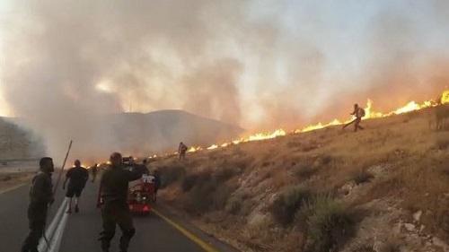 تعويض المزارعين عن حرائق ممتلكاتهم في وادي الأردن