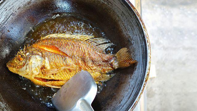 تعرفي إليها.. كيفية تقليل امتصاص السمك المقلي للزيت