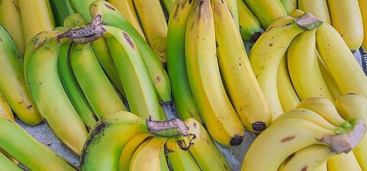 الموز الأخضر أم الأصفر.. أيهما يعود بفائدة أكبر على الجسم؟