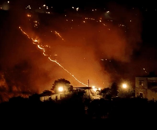 الامن : حريق جرش مساحته 20 دونما