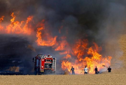 الزراعة: حريق جرش في أراض مملوكة