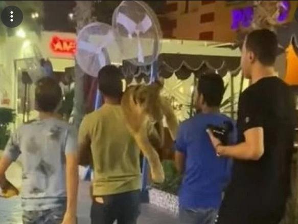 مصر.. القبض على 3 أشخاص بحوزتهم أسد